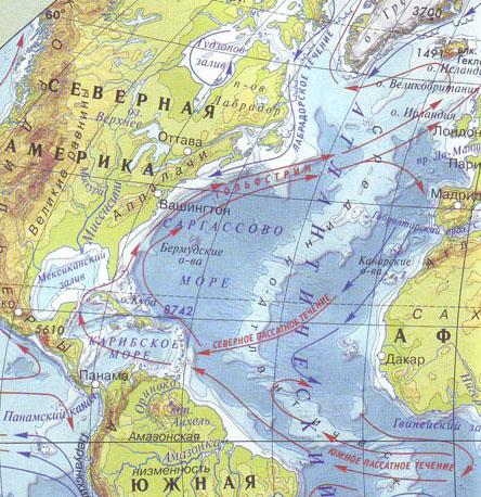 Саргассово море на карте фото