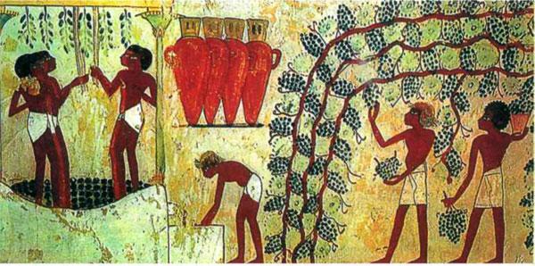 фото Хозяйство Древнего Египта